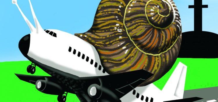 Vânătoarea de melci și zborul liber