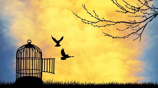 Îmbrățișează libertatea și iubește-ți aproapele