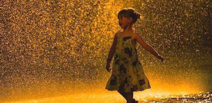 Ploaia de plastilină și pasiunile păpădiei