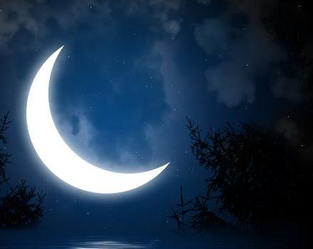 Luna târzie şi păpădia cea zglobie