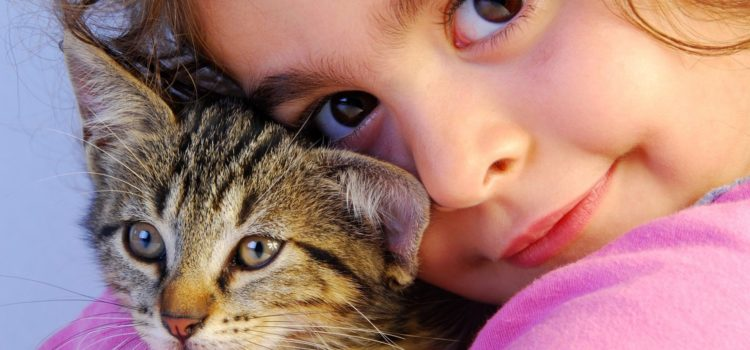 O Masha exilată și pisicuța cea țâfnoasă