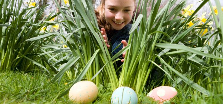 Vânătoarea ouălor ascunse de Iepuraș