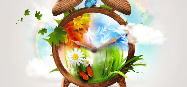 O primăvară nesfârșită în preajma păpădiei