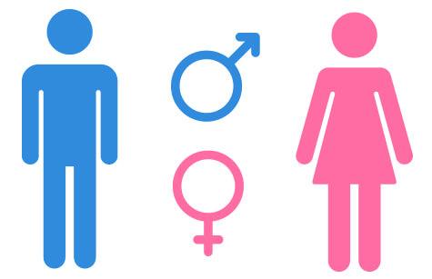 Despre penis și alte rușini feminine