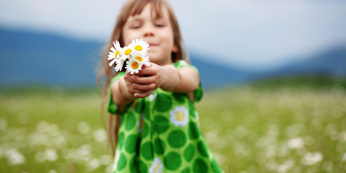 Simfonia florilor parfumate de grădină