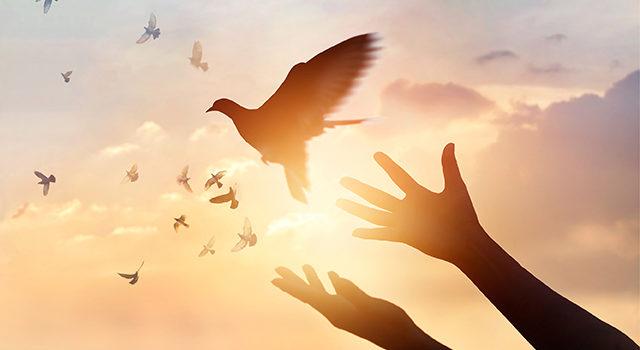 Mitul iertării și paradigmele lui