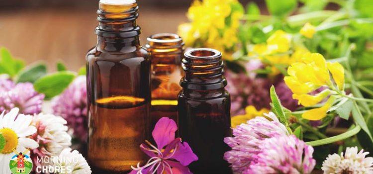 Răceli parfumate cu uleiuri esențiale