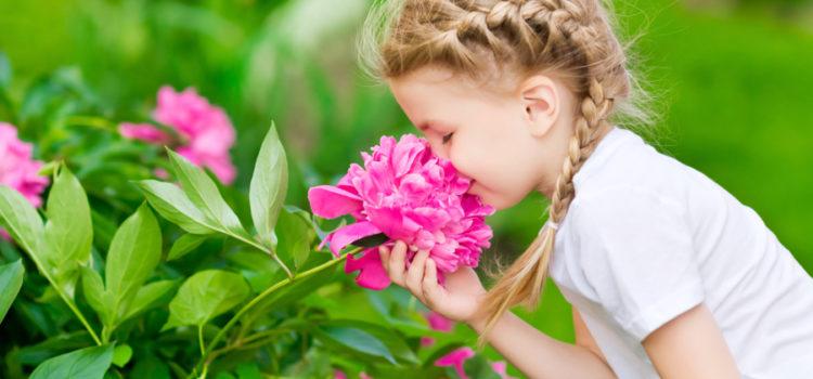 Sensibilitatea ca instrument de însușire a fericirii